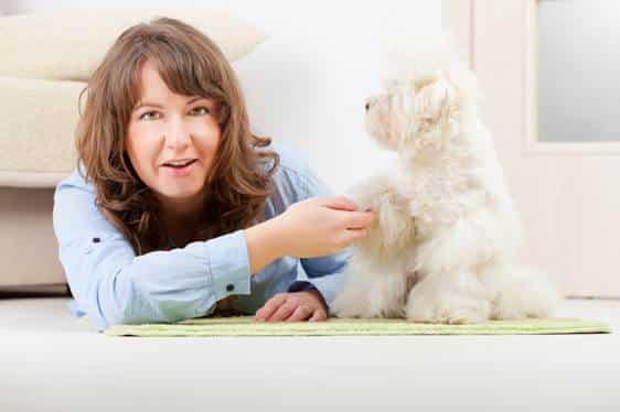 owning a pet is good for your physical and mental health