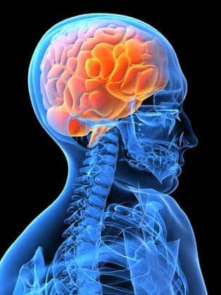 treat holistically mind body connection